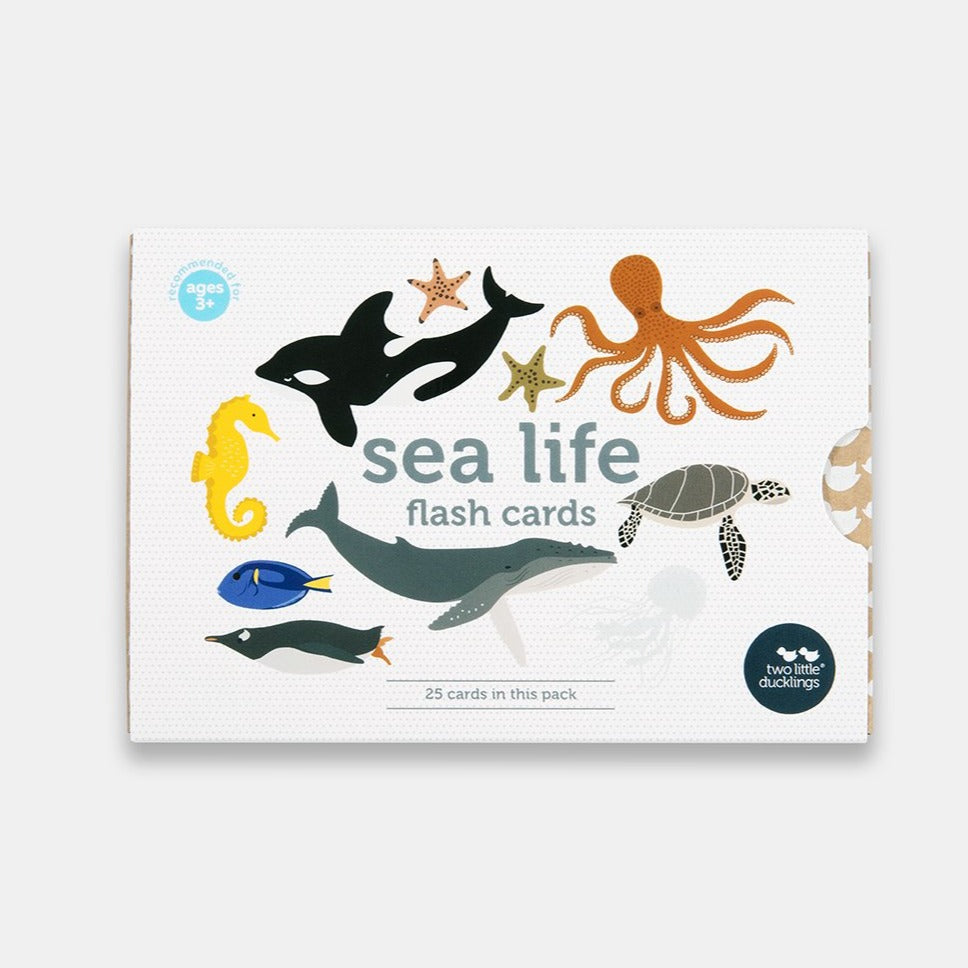 Two Ugly Ducklings - Sea Life Flash Cards