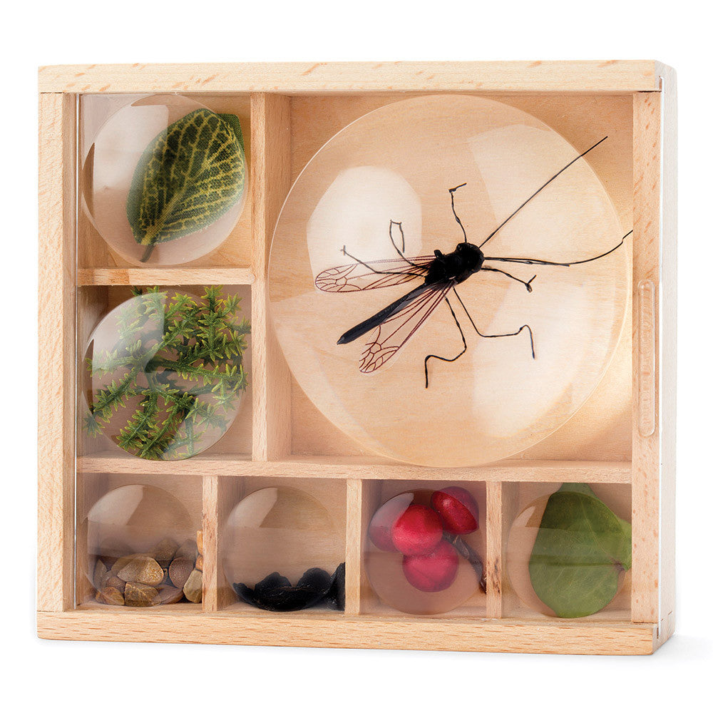 Kikkerland Great Outdoors - Bug Box
