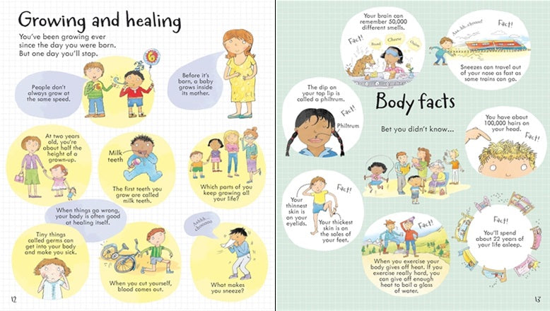 Look Inside Your Body - A Lift The Flap Book
