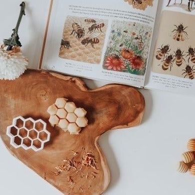 Beadie Bug Dough Cutter - Honeycomb