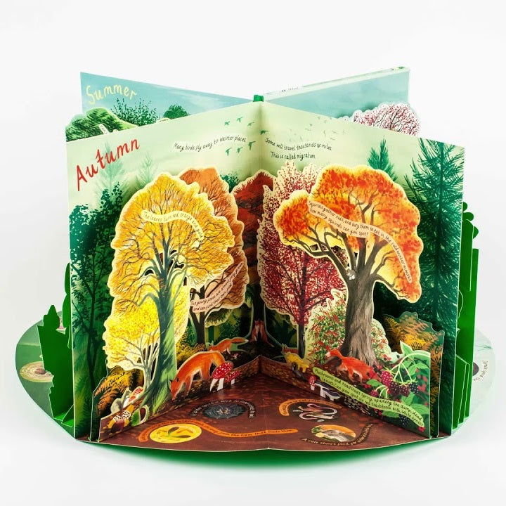 A Year in Nature - A Pop Up Carousel