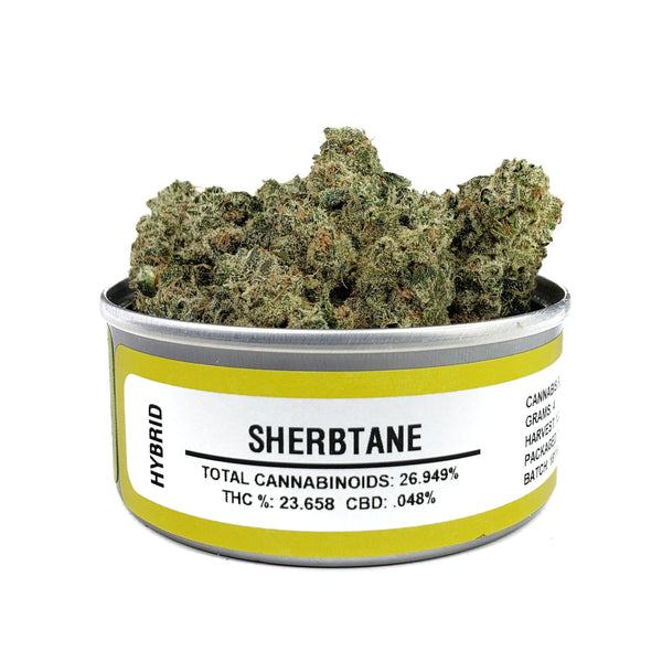 Sherbtane 4g by Space Monkey Meds (23.7% THC)