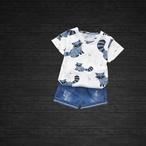 Blue Raccoon Printed Tee and Short Set for Little Kids - shopfils.com