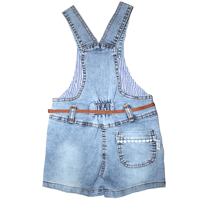 Cute Embroidered Flower Dungaree for Baby Girls - shopfils.com