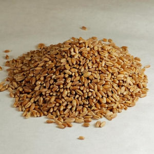 Wheat Grain - Organic, Bulk