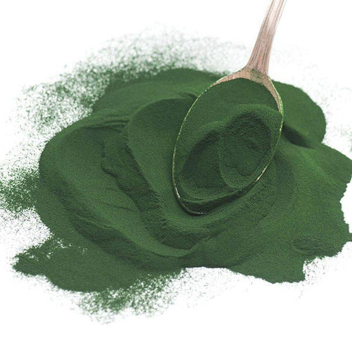 Chlorella - Organic Powder, Bulk