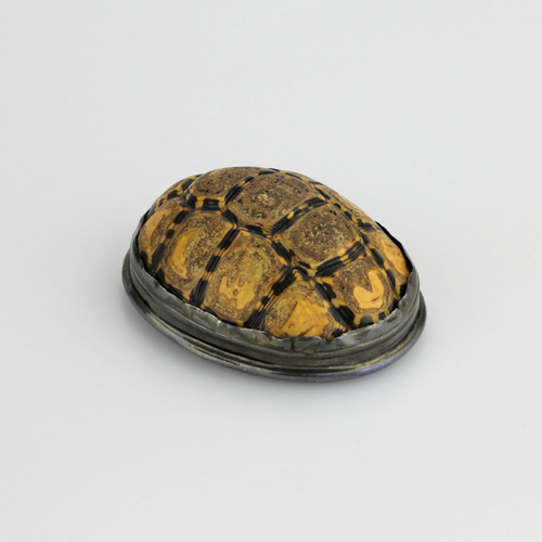 Tortoiseshell Snuff Box with Pewter Mounts - The Antique Guild