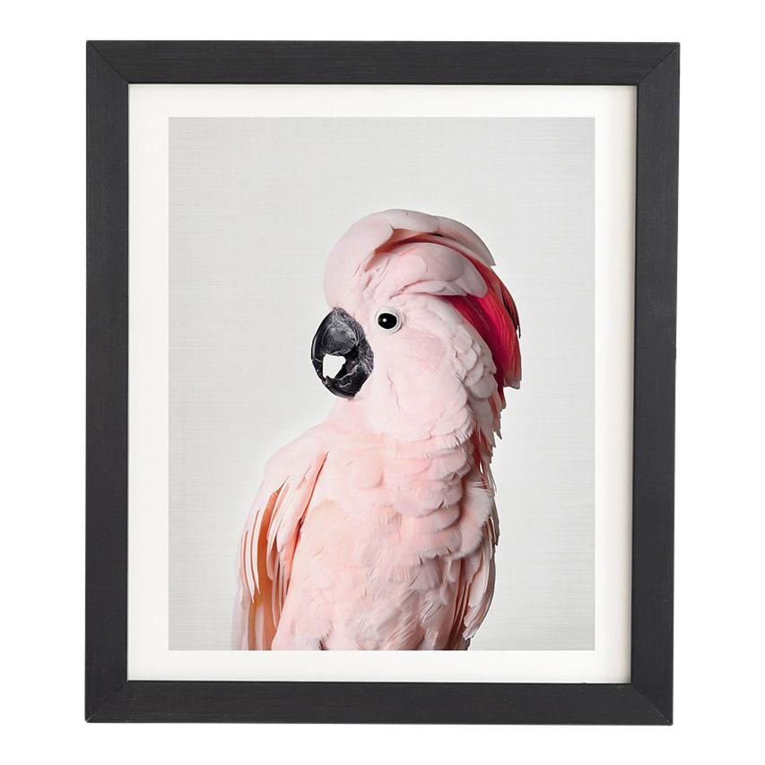 Pink Cockatoo Framed Art