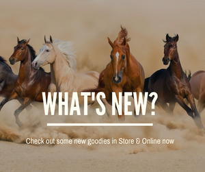What's New In Store?