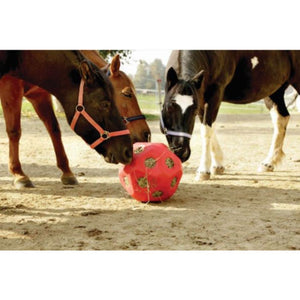 Horse Toy Hayball