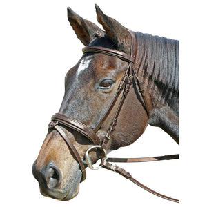 Cavallino Raised and Padded Bridle Brown