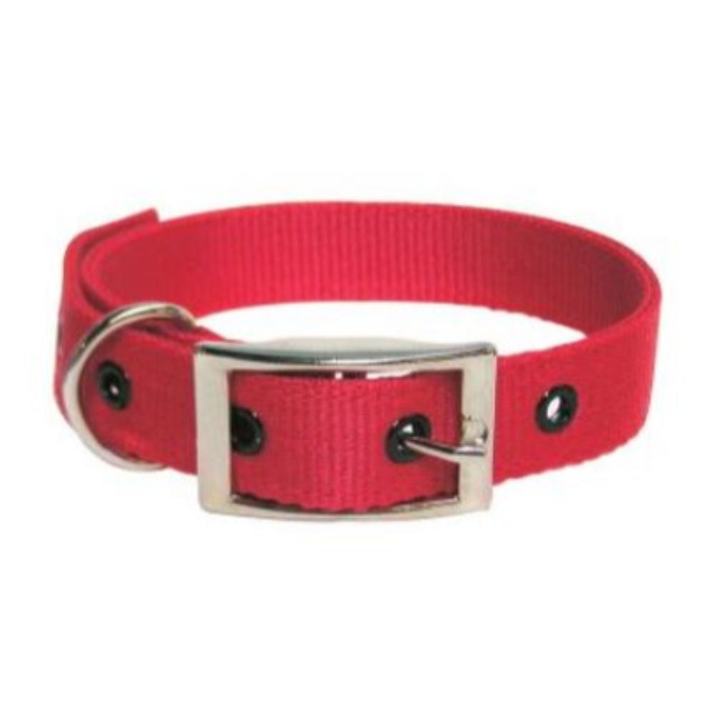 Goat Collar Nylon