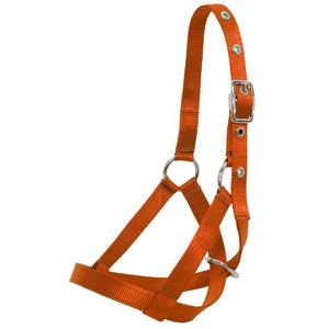 Nylon Web Calf Halter