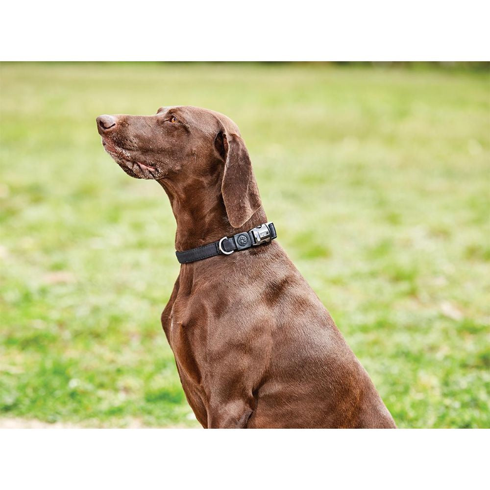 Weatherbeeta Elegance Dog Collar Black