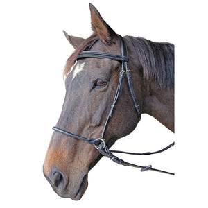 Platinum Thompson Bitless Bridle
