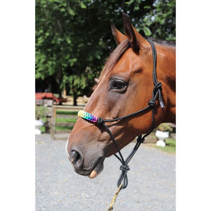Rainbow Padded Nose Rope Halter