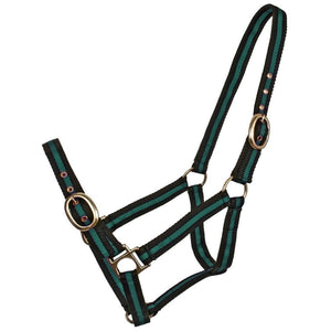 BT Striped Web Halters