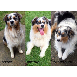 Bee Kind Naturally Whitening Shampoo Bar for Horses and Dogs