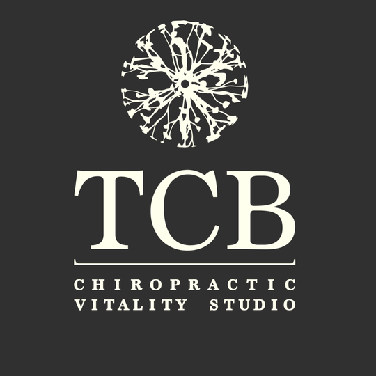 Terry Chiropractic