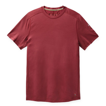 Men's Smartwool Merino Sport 150 Tech Tee in Masala