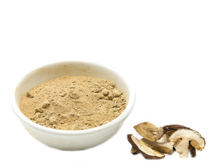 Domestic Porcini Powder
