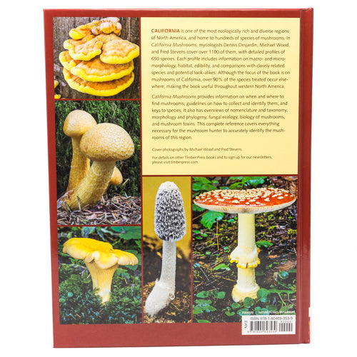 CA Mushroom the Comprehensive ID Guide