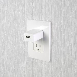 2 Amp UL Certified Wall Charger