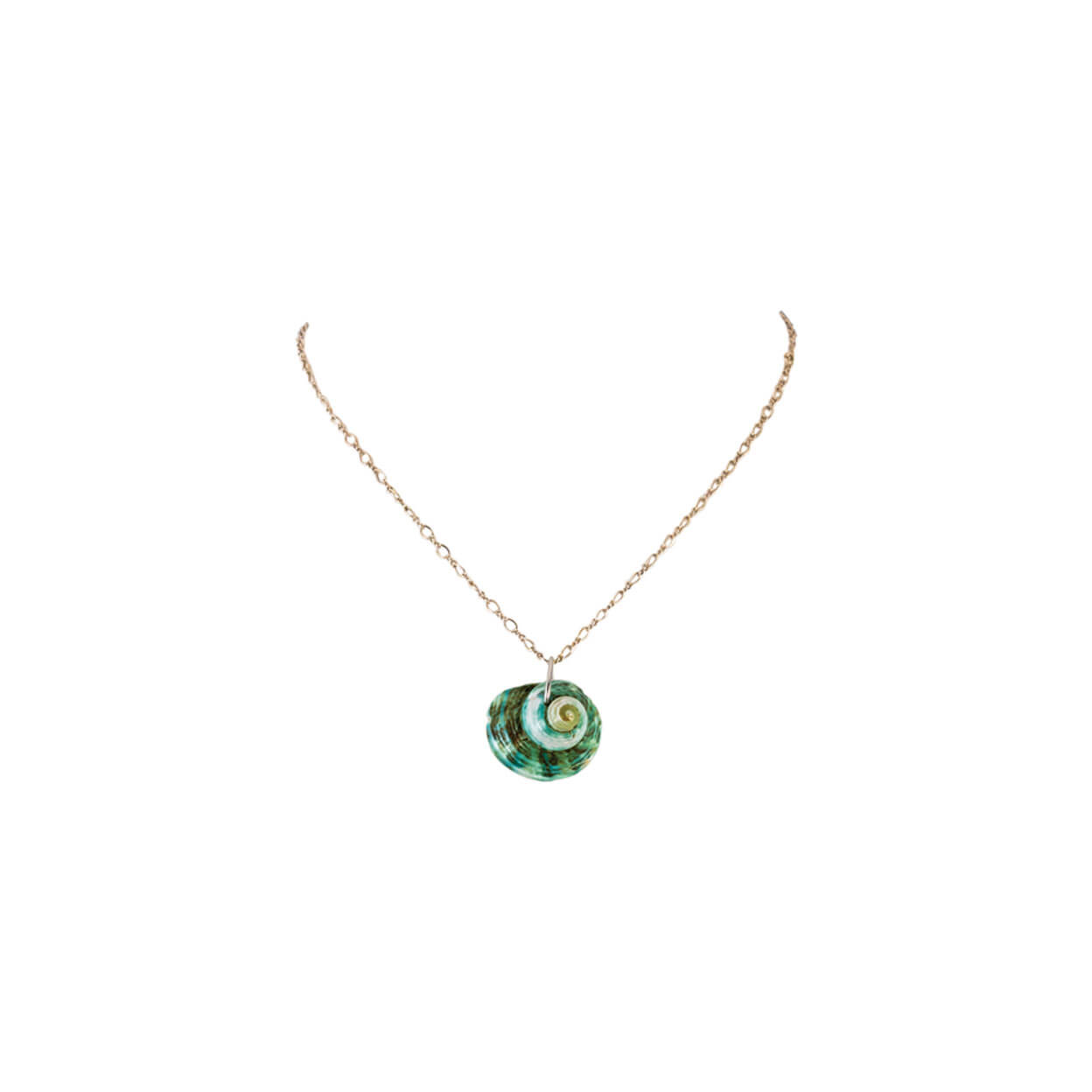 tropical style mint shell pendant necklace on silver chain