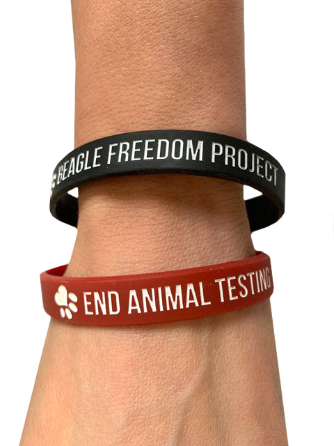 Accessory | BFP Adult | Wristbands