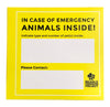 Animal | Emergency Cards | Two-pack