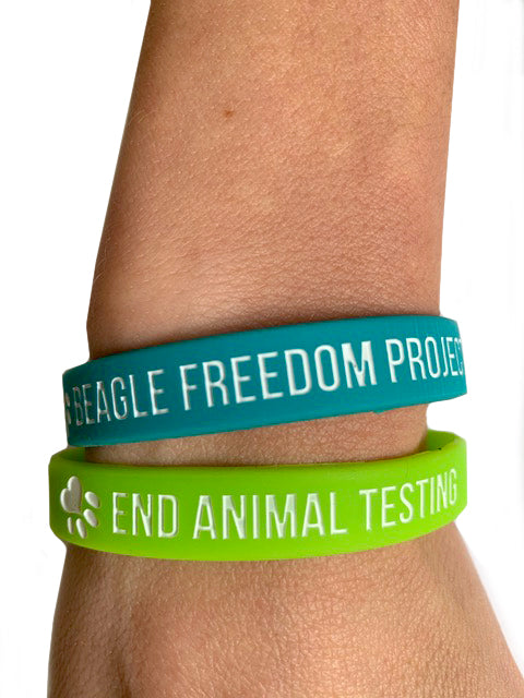 Accessory | BFP Kids | Wristbands Pair