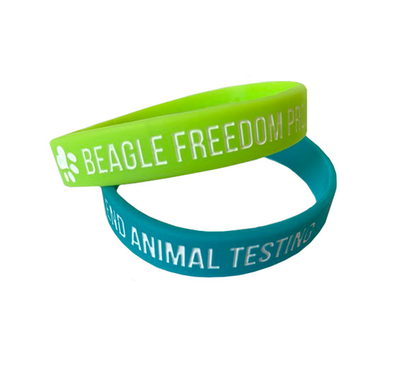 Accessory | BFP Kids | Wristbands