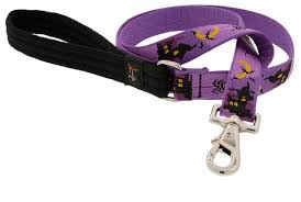 "Lupine Haunted House 3/4"" Dog Leash 6'"