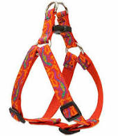 "Lupine 1/2"" GoGo Gecko Step In Harness 10""-13"""