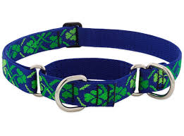 "Lupine Lucky Dog Collar 3/4"" 9-14"""