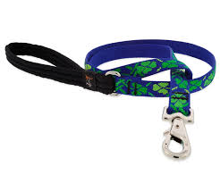 "Lupine Lucky Dog Leash 3/4"" 6 Foot"