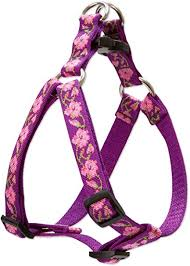 "Lupine 1/2"" Rose Garden Step In Harness 10""-13"""