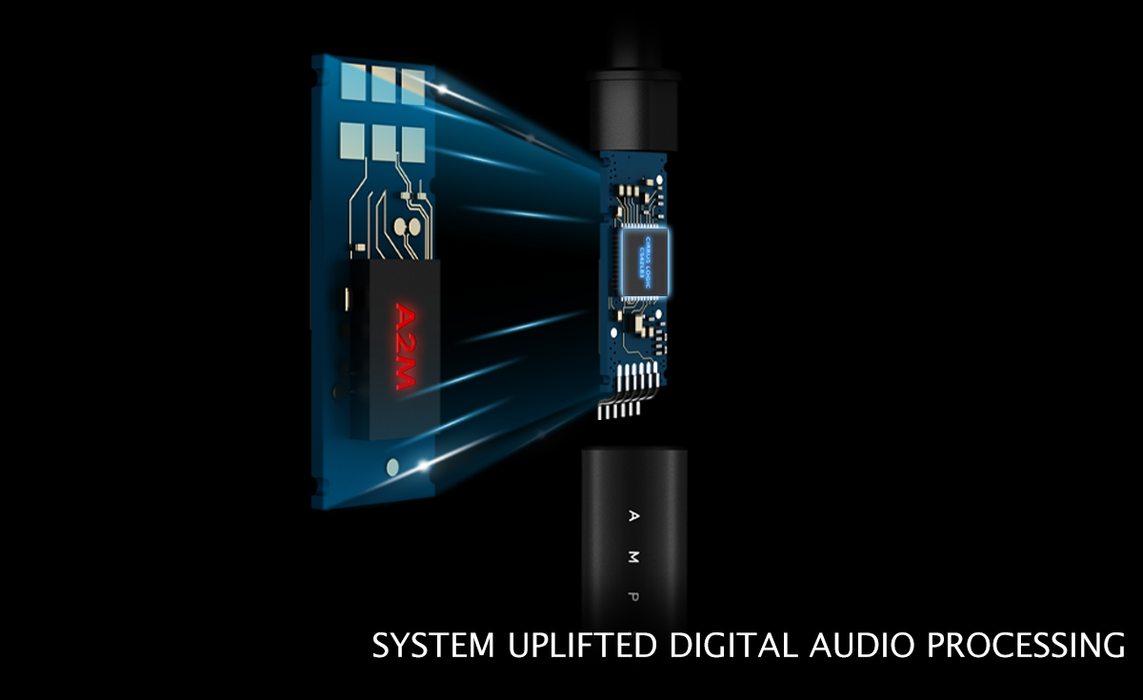 Dual-core (MCU & DSP) system uplifted digital audio processing.