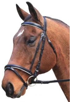 Eureka Eventing Bridle