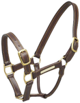 Zilco Leather and Brass Halter