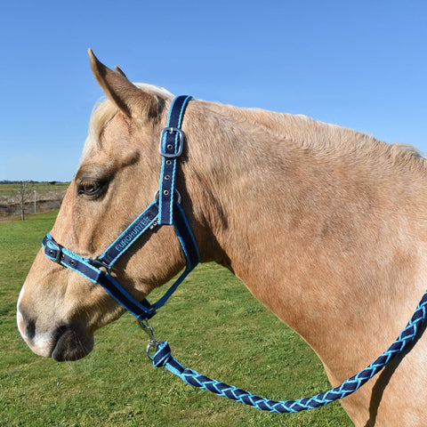 Eurohunter Emblem Halter/Lead Set