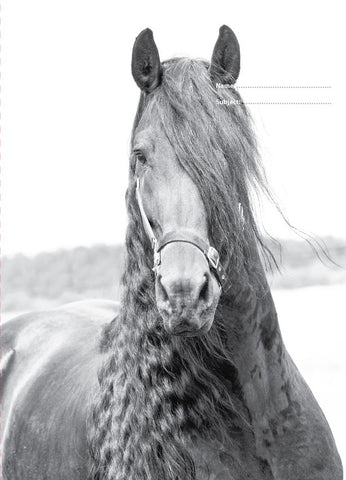 Black and White Horse A4 Cover