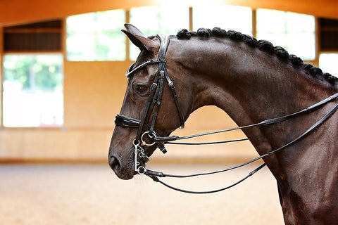 Belle Equestrian Princess Double Bridle
