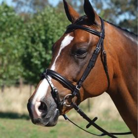 Grainge Elite Eventing Snaffle