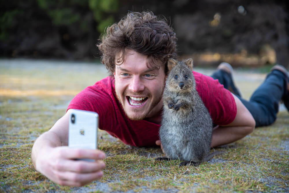 the best quokka selfie - allan dixon invited quokka selfies