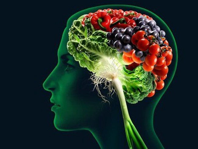 The Importance of Diet in Cognitive Health