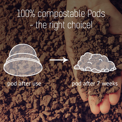 Compostable K-Cups better than plastic or recyclable coffee pods from Keurig