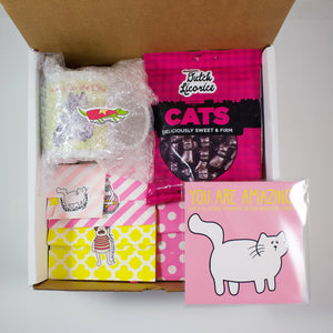The Deluxe Cat Care Package