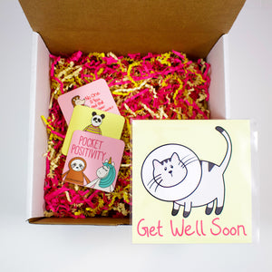 Make Your Own Get Well Soon Cat Care Package