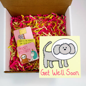 Make Your Own Get Well Soon Dog Care Package